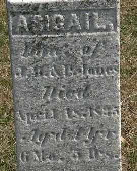JONES, J.B. - Erie County, Ohio | J.B. JONES - Ohio Gravestone Photos