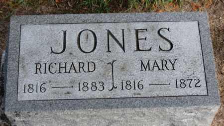 JONES, MARY - Erie County, Ohio | MARY JONES - Ohio Gravestone Photos