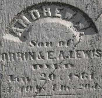 LEWIS, ANDREW W. - Erie County, Ohio | ANDREW W. LEWIS - Ohio Gravestone Photos