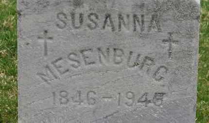 MESENBURG, SUSANA - Erie County, Ohio | SUSANA MESENBURG - Ohio Gravestone Photos