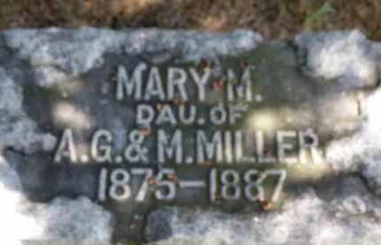 MILLER, A.G. - Erie County, Ohio | A.G. MILLER - Ohio Gravestone Photos