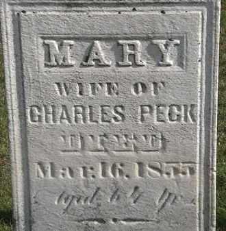 PECK, MARY - Erie County, Ohio   MARY PECK - Ohio Gravestone Photos
