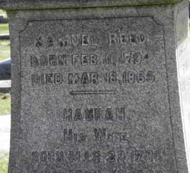REED, HANNAH - Erie County, Ohio | HANNAH REED - Ohio Gravestone Photos