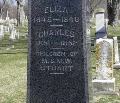 STUART, ELIZA - Erie County, Ohio | ELIZA STUART - Ohio Gravestone Photos