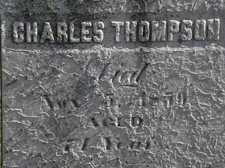 THOMPSON, CHARLES - Erie County, Ohio | CHARLES THOMPSON - Ohio Gravestone Photos