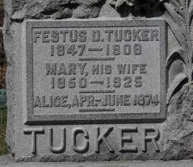 TUCKER, ALICE - Erie County, Ohio   ALICE TUCKER - Ohio Gravestone Photos