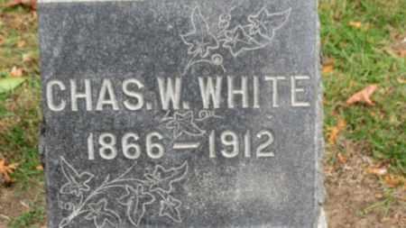 WHITE, CHAS. W. - Erie County, Ohio   CHAS. W. WHITE - Ohio Gravestone Photos