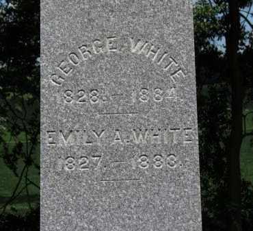 WHITE, EMILY A. - Erie County, Ohio | EMILY A. WHITE - Ohio Gravestone Photos