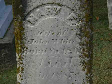 WHITE, MARY F. - Erie County, Ohio | MARY F. WHITE - Ohio Gravestone Photos