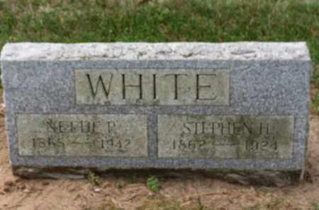 WHITE, NETTIE P. - Erie County, Ohio | NETTIE P. WHITE - Ohio Gravestone Photos