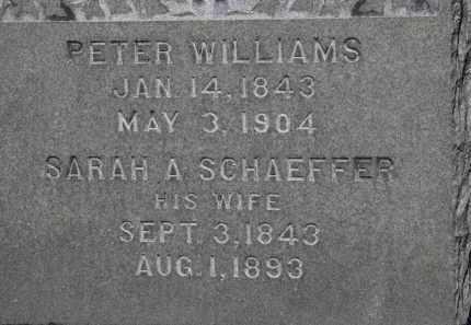 WILLIAMS, PETER - Erie County, Ohio | PETER WILLIAMS - Ohio Gravestone Photos