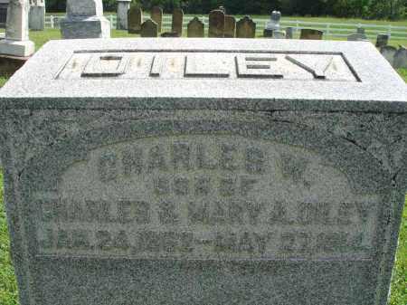DILEY, CHARLES W. - Fairfield County, Ohio   CHARLES W. DILEY - Ohio Gravestone Photos