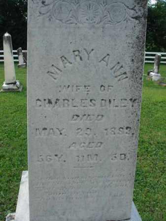 DILEY, MARY ANN - Fairfield County, Ohio | MARY ANN DILEY - Ohio Gravestone Photos