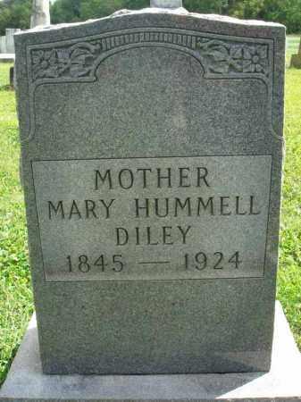 DILEY, MARY - Fairfield County, Ohio | MARY DILEY - Ohio Gravestone Photos