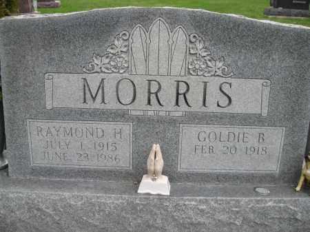 GREENLEE MORRIS, GOLDIE BELLE - Fayette County, Ohio | GOLDIE BELLE GREENLEE MORRIS - Ohio Gravestone Photos