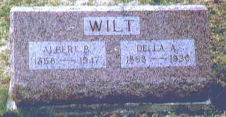 WILT, ALBERT B - Fayette County, Ohio | ALBERT B WILT - Ohio Gravestone Photos
