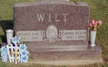 WILT, HOMER - Fayette County, Ohio | HOMER WILT - Ohio Gravestone Photos