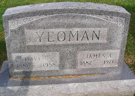 YEOMAN, OLIVE B. - Fayette County, Ohio | OLIVE B. YEOMAN - Ohio Gravestone Photos