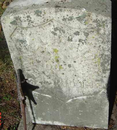 BROWN, DANIEL - Franklin County, Ohio | DANIEL BROWN - Ohio Gravestone Photos