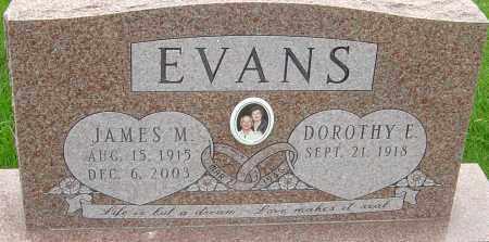 EVANS, JAMES M - Franklin County, Ohio | JAMES M EVANS - Ohio Gravestone Photos