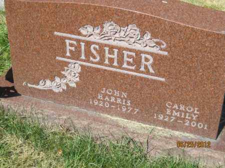 FISHER, CAROL EMILY - Franklin County, Ohio | CAROL EMILY FISHER - Ohio Gravestone Photos