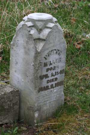MILLER, PETER - Franklin County, Ohio   PETER MILLER - Ohio Gravestone Photos