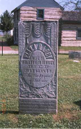 RAREY, ELIZA - Franklin County, Ohio   ELIZA RAREY - Ohio Gravestone Photos