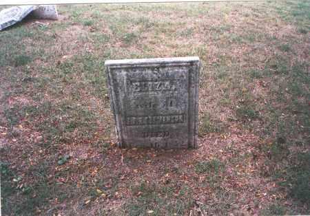 STEVENSON, ELIZA - Franklin County, Ohio   ELIZA STEVENSON - Ohio Gravestone Photos