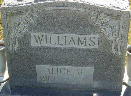 WILLIAMS, ALICE MAE - Franklin County, Ohio | ALICE MAE WILLIAMS - Ohio Gravestone Photos