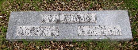WILLIAMS, JELINA - Franklin County, Ohio | JELINA WILLIAMS - Ohio Gravestone Photos