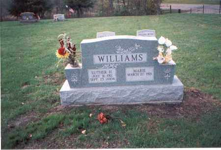 WILLIAMS, LUTHER H. - Franklin County, Ohio | LUTHER H. WILLIAMS - Ohio Gravestone Photos