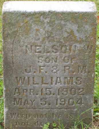 WILLIAMS, NELSON W. - Franklin County, Ohio   NELSON W. WILLIAMS - Ohio Gravestone Photos