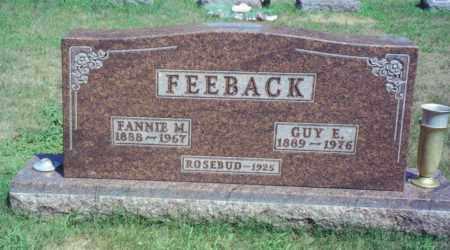 FEEBACK, FANNIE M. - Fulton County, Ohio | FANNIE M. FEEBACK - Ohio Gravestone Photos