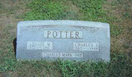 POTTER, LOUISE M. - Fulton County, Ohio | LOUISE M. POTTER - Ohio Gravestone Photos