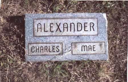 ALEXANDER, MAE - Gallia County, Ohio | MAE ALEXANDER - Ohio Gravestone Photos