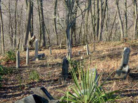 AN OVERVIEW #3, STORYS RUN - Gallia County, Ohio   STORYS RUN AN OVERVIEW #3 - Ohio Gravestone Photos