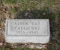 CALLICOAT, ALVIN - Gallia County, Ohio | ALVIN CALLICOAT - Ohio Gravestone Photos