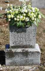 DAVIS, CARRIE L. - Gallia County, Ohio | CARRIE L. DAVIS - Ohio Gravestone Photos