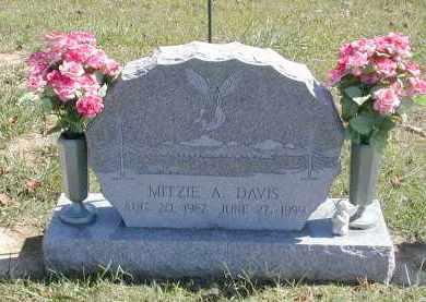 DAVIS, MITZI - Gallia County, Ohio | MITZI DAVIS - Ohio Gravestone Photos