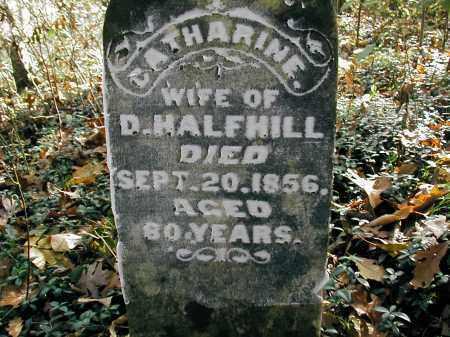 HALFHILL, CATHERINE - Gallia County, Ohio | CATHERINE HALFHILL - Ohio Gravestone Photos