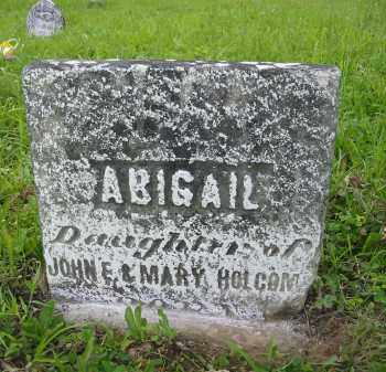 HOLCOMB, ABIGAIL - Gallia County, Ohio | ABIGAIL HOLCOMB - Ohio Gravestone Photos
