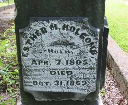 HOLCOMB, ESTHER M. - Gallia County, Ohio | ESTHER M. HOLCOMB - Ohio Gravestone Photos