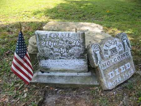 HOLCOMB, HILAS M. - Gallia County, Ohio | HILAS M. HOLCOMB - Ohio Gravestone Photos