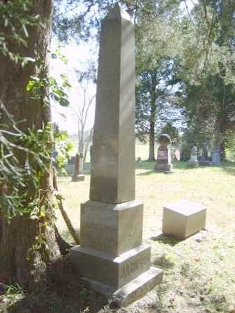 JACKSON, THIRZA - Gallia County, Ohio | THIRZA JACKSON - Ohio Gravestone Photos