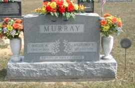 MURRAY, ANTHONY - Gallia County, Ohio   ANTHONY MURRAY - Ohio Gravestone Photos