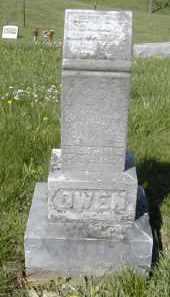 OWEN, NETTIE L. - Gallia County, Ohio | NETTIE L. OWEN - Ohio Gravestone Photos
