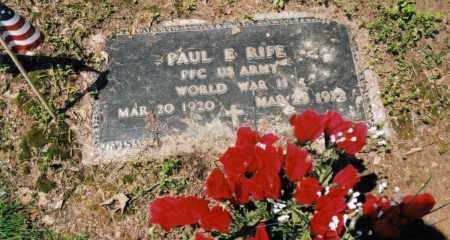 RIFE, PAUL ELLIS - Gallia County, Ohio | PAUL ELLIS RIFE - Ohio Gravestone Photos