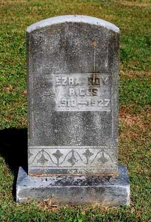 RIGGS, EZRA ROY - Gallia County, Ohio | EZRA ROY RIGGS - Ohio Gravestone Photos