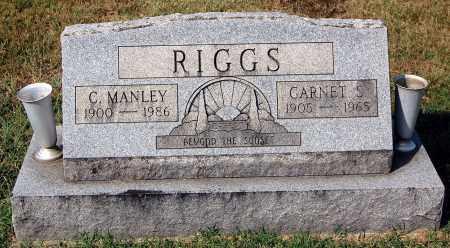 RIGGS, C. MANLEY - Gallia County, Ohio | C. MANLEY RIGGS - Ohio Gravestone Photos