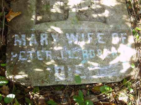 ROBERTS, MARY - Gallia County, Ohio | MARY ROBERTS - Ohio Gravestone Photos